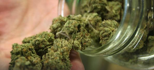 Maine Communities Putting Brakes on Marijuana Sales